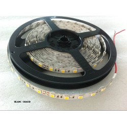 Ruban Led 5050 14,4 Watts IP20