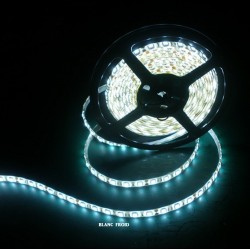 Ruban Led 5050 Résiné Couleur Blanc Froid 14,4 Watts
